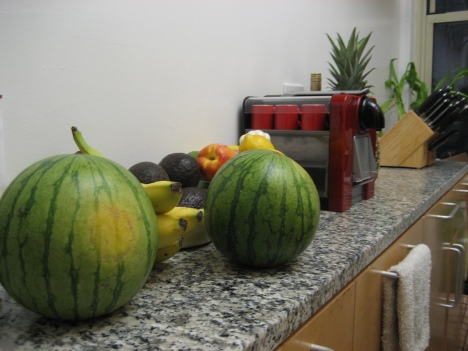 Two mini melons, a bunch of bananas, 7 limes, 4 lemons, 2 heads of garlic, 3 avocados, 2 scallions and a pineapple!